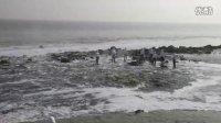 《潮流•污流》萧山污染纪实