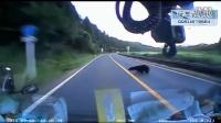 监控实拍:黑熊被大卡车撞飞 打个滚儿爬起后就跑...