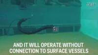 水下机器蛇.mp4