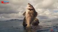 【去健身】深海潜泳赏珊瑚猎巨鱼 这才是无敌海景