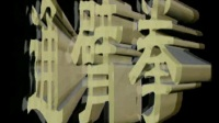赵建国通臂拳系列 01基本功