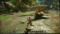 风带《怪物猎人OL》狩猎日记02:太刀VS上位雌火龙