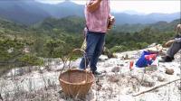 铁山罗地自然景观—白石山与赤家坪水库