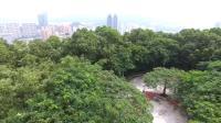 无人机航拍深圳罗湖翠竹公园