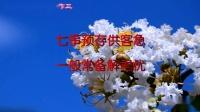《03》紫微花&楹联展播特别制作三