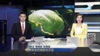 """黑龙江香瓜""""嘎嘎甜""""的猫腻:当地瓜贩使用增甜剂泛滥 上海早晨 180719"""