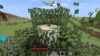 【伺邬】我的世界新坑:*大千世界*.1要致富先撸树