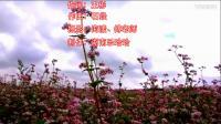 《荞麦花》 扇子舞  表演与教学 两人组合 编舞 无边 瓦瓦 湖南乐哈哈广场舞(95)制作 乐哈哈