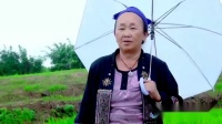 苗族电影 Hmong New Movie 2014-2015 Nyab Qhaub Piaj Ntxhais Qhaub Poob  (3)