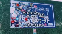 滇进新出,穿越大美西藏30天自驾。线路特色:G318川藏线、青藏线、滇藏线、丝绸之路河西走廊线、甘南川西线、青海环线、新疆南疆线、四川线、西藏山南线、云贵线。