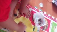 小伶玩具饼干