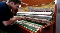 施坦雷诺钢琴德国技师生产线上的专业技师忙碌的工作中严谨细致的工作作风让人折服