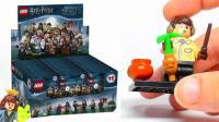 【积木砖家乐高】LEGO Neville Longbottom Minifigure Comparison Harry Potter Collection