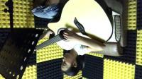 丁香花_云璐 吉他弹唱 柠檬吉他学校