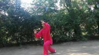 20180819王蓝在公园演练40式太极拳