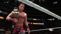 WWE2K18人物的招牌技与终结技 回归篇