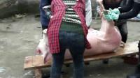 农村四姐妹准备美女杀猪!