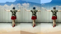 莲芳姐广场舞《爱情就像一首歌》32步