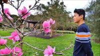 奥克兰植物园, 新西兰旅游景点