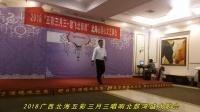 我的中国心-黄海旋卡拉OK正版