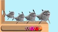 木锤敲足球给大鲨鱼换上漂亮颜色,学习英语童谣儿歌!