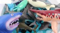 学习野生动物的颜色蓝色海洋水宠物鲨鱼玩具为孩子们