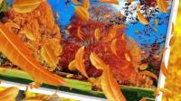 音画欣赏《秋天的童话》