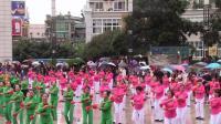 重庆市梁平区老体协纪念改革开放40周年暨重阳节
