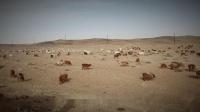 北疆之旅 DAY1