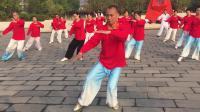 汉阳江滩梦之队在队长王传桥的带领下集体晨练二十四式太极拳2018-10-23