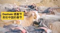 博卡拉德赛节Dashain的山羊游行
