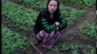 苗族搞笑电影视频2018/10/29上传