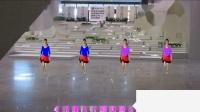 2018年最新广场舞茶姐广场舞等到山花开