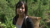Hmong Movie【Ntsuag txij nkawm _百年之好】 第三集