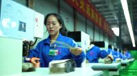 飞龙鞋业宣传片   (英文版)