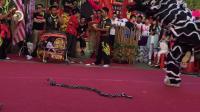 11.11香港传统南狮比赛,荣获冠军!