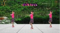 阳光美梅广场舞《采槟榔》初学入门舞蹈16步