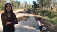 农村婆婆为了减轻家里的负担,大热天太阳下面开荒搞笑视频