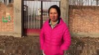 农村媳妇饲养老母鸡,买6只大鹅来护院,12一斤贵不贵?搞笑视频