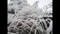 2018年12月8~9号黄山赏雪之旅