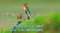 11 Những Vần Thơ Thương Nhớ_VÔ NHẤT ĐẠI SƯ THÍCH THIỀN TÂM