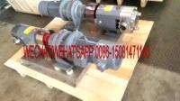 rotor lobe pump 2