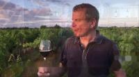 Maison Borgeat 法国波尔家 Avitin 艾维特 干红葡萄酒