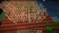 【我的世界Minecraft】大橙子教小枫玩生存第4集-来自沼泽的啪啪啪