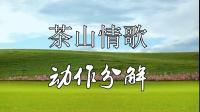 杨钰莹情歌精选 广场舞《茶山情歌》欢快好看,附教学