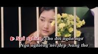 顺化诗女 Nàng Thơ Xứ Huế (Karaoke) 演唱 瑞芝 Thùy Chi