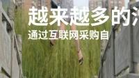 湖南奥乐广告传媒有限公司董事长刘佳丽分享未来发展只有一个方面,那就是共享经济。