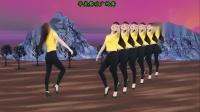 广场舞《夜之光》动感时尚32步现代舞 好听好看附教学