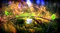 【屌德斯_我的世界】_萌萌村第二季_在竞技场上写了个武字