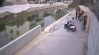 这骑车技术绝对是大师级的!